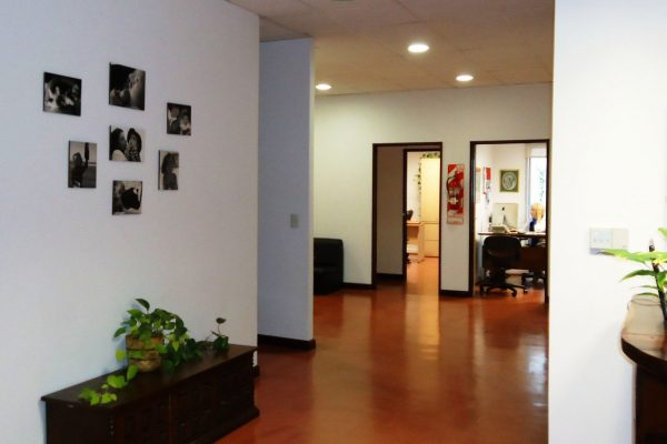 Hall de Ingreso al Instituto